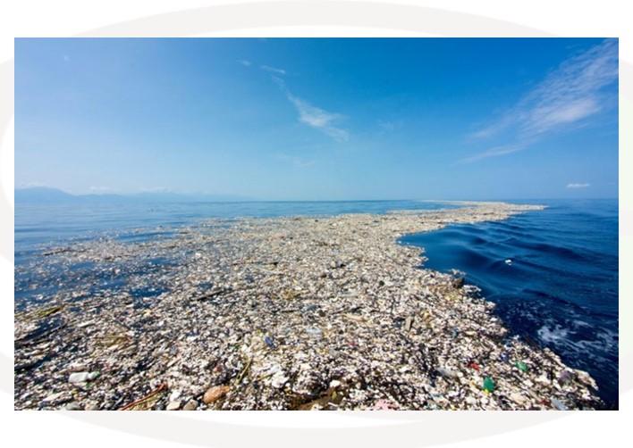 """Featured image for """"L'isola di plastica"""""""